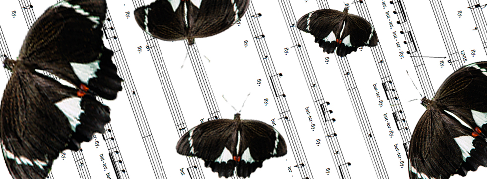 Butterflies dance (for a cappella SATB choir, 2009)